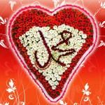 Hz. Muhammed (s.a.v.)in Tüm Duaları
