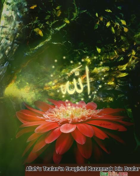 Allah'u Teala'nın Sevgisini Kazanmak İçin Yapılabilecek Dualar
